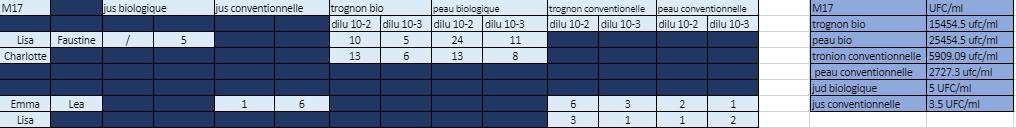 R%C3%A9sultat%20M17.PNG